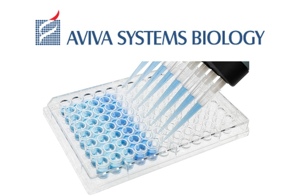 OKAG01381-Mouse ELISA Packege from Aviva System Biology