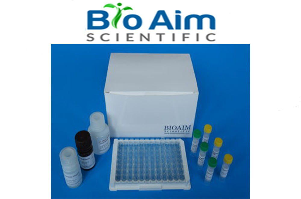 Preview ELISA Kit package from BioAim