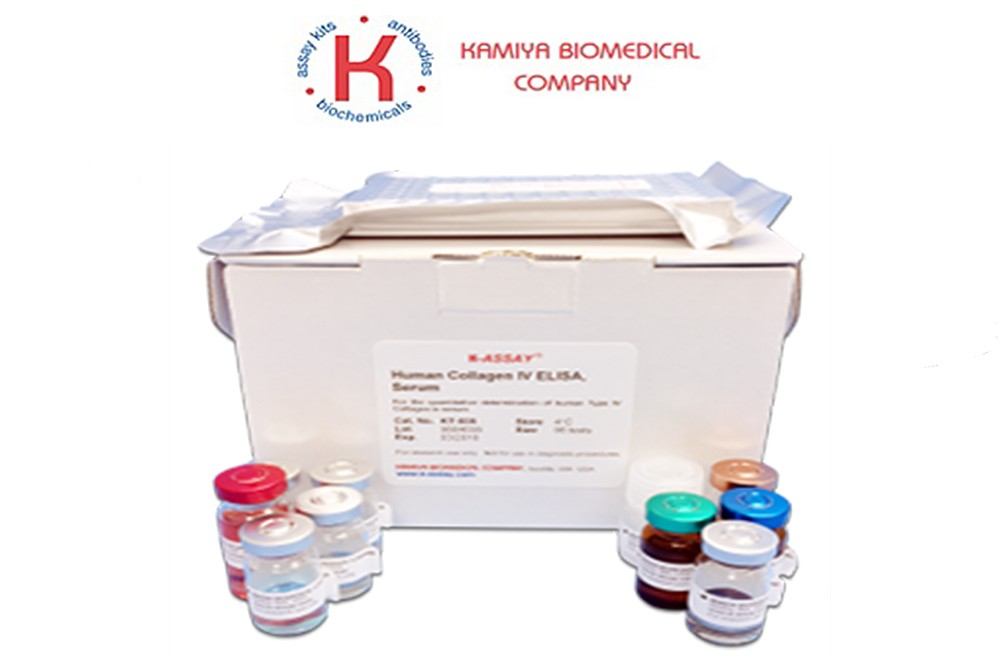 Preview ELISA Kit package from Kamiya Biomedical