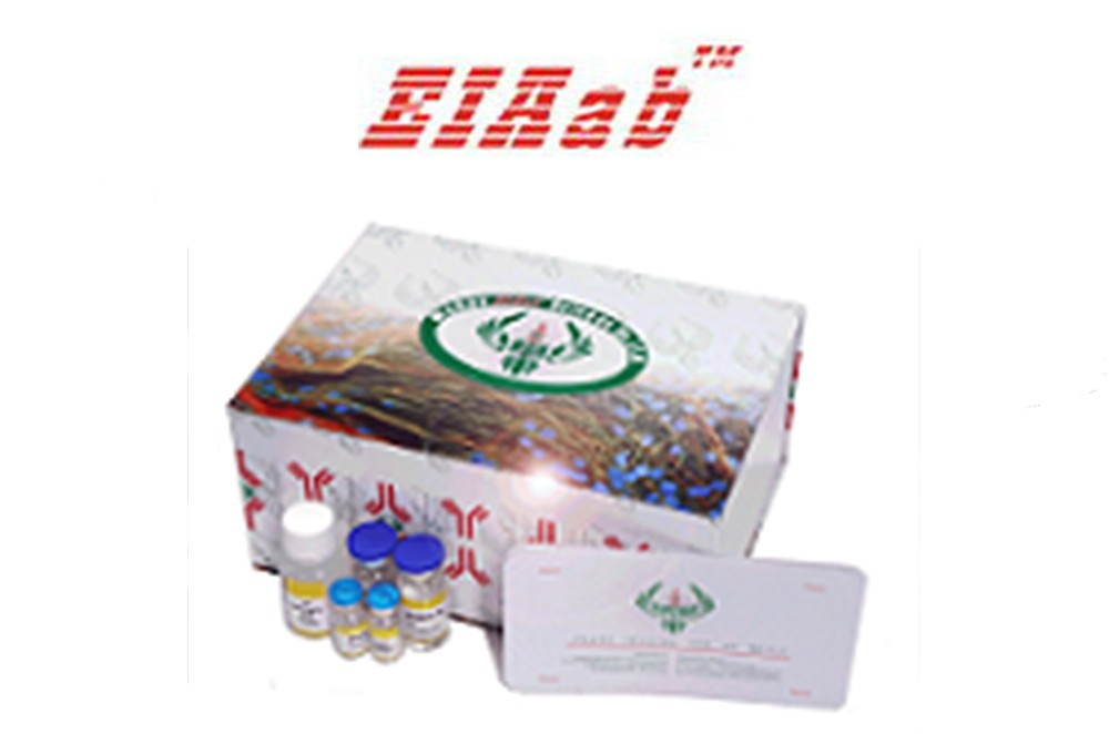 ELISA Kit package from Wuhan Eiaab Science Co.