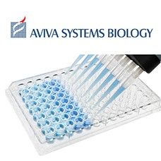 OKAG00597 Preview ELISA Packege from Aviva System Biology
