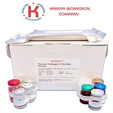 Preview ELISA Kit package from ICL (Immunology Consultants Laboratory)
