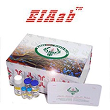 Preview ELISA Kit package from Wuhan Eiaab Science Co.