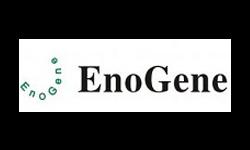 Enogene Biotech